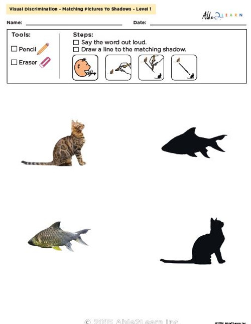 Visual Discrimination - Matching Pictures to Shadows - Animals (Lv. 1)
