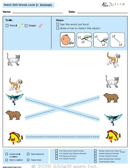 Animals Identical Picture  Matching Program with ABLLS-R™ Words (Lv. 2)