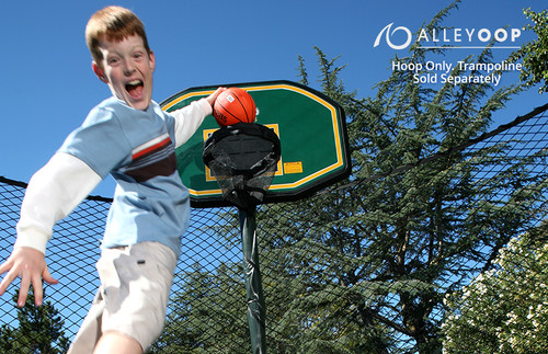 AlleyOOP ProFlex Basketball Set For Trampolines product image