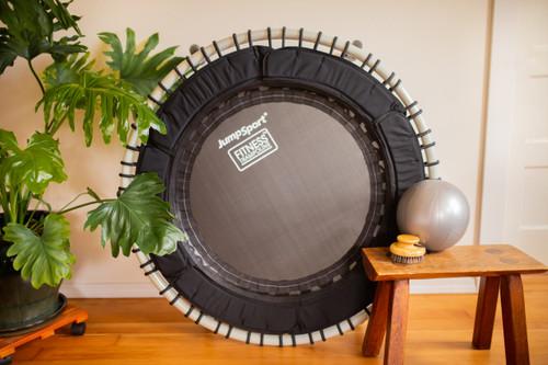 "Wellness Trampoline Bundle (Model 250, Dry Brush, & 9"" ball) product image"