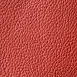 Armadillo Leather