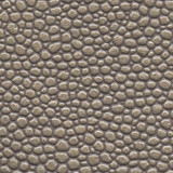 Cobra - Cement