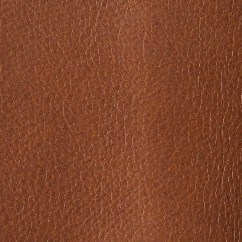 Excelsior Leather