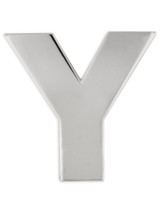 Silver Y Pin