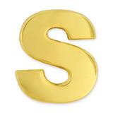Gold S Pin