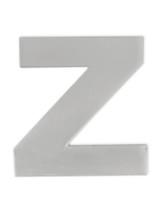 Silver Z Pin