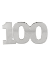 Silver 100 Pin