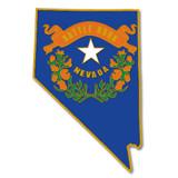 Nevada Pin