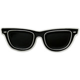 Sunglasses Pin