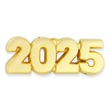 2025 Year Lapel Pin