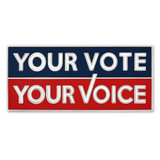 Your Vote Your Voice Pin