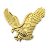 Gold Eagle Pin Magnetic Back