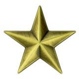 3D Star Pin - Bronze