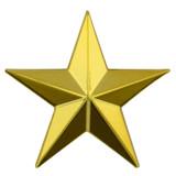 3D Star Pin - Gold