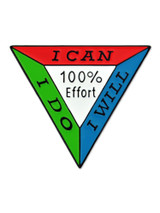 100% Effort Pin