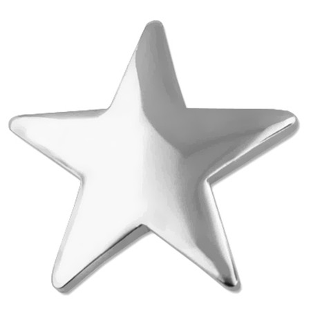 Silver Star Pin Front
