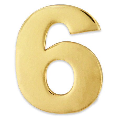 Gold Number 6 Pin Front