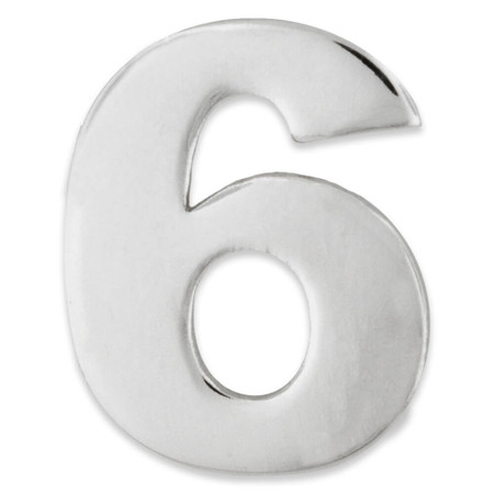 Silver Number 6 Pin Front