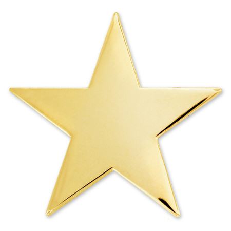 Gold Star Pin with Magnetic Back Front