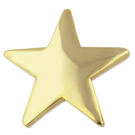 Gold Star Pin Front