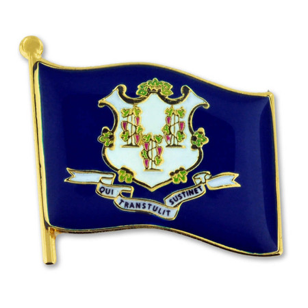 Connecticut State Flag Pin Front