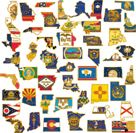 50 State SHAPE Pin Collection Front