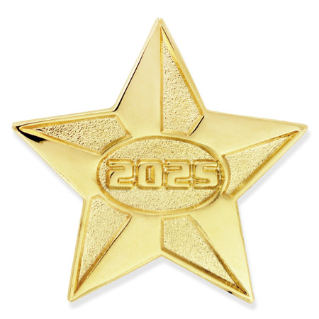 2025 Gold Star Pin Front