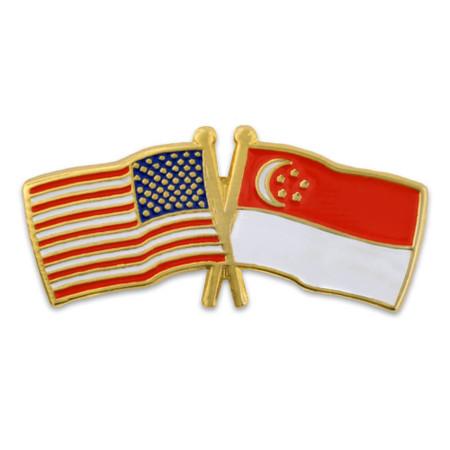 USA and Singapore Flag Pin Front