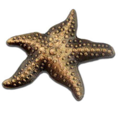 Starfish 3-D Lapel Pin