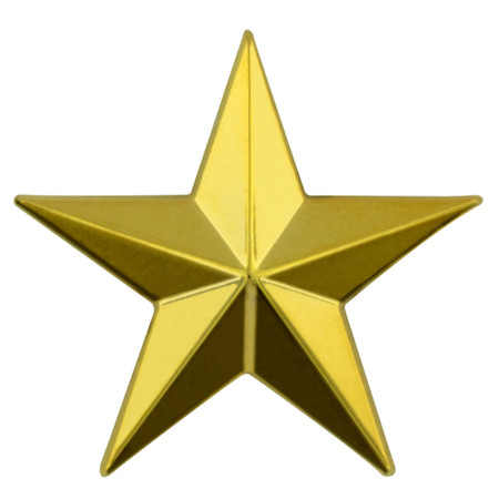 3D Star Pin Gold