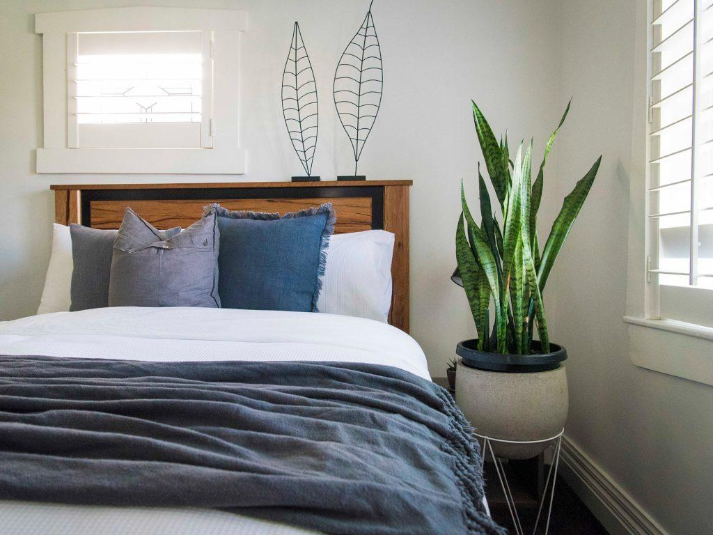 Wonderful Best Plants For Your Bedroom To Help You Sleep