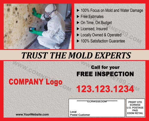 Mold Remediation Postcard 02