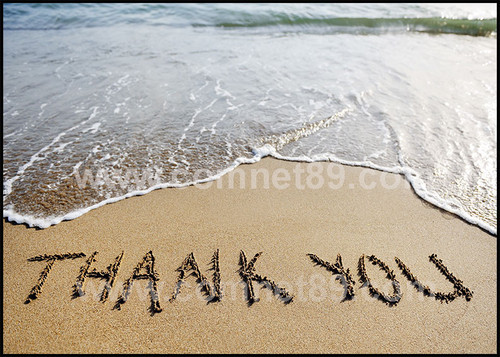 Thank You Greeting Card 03