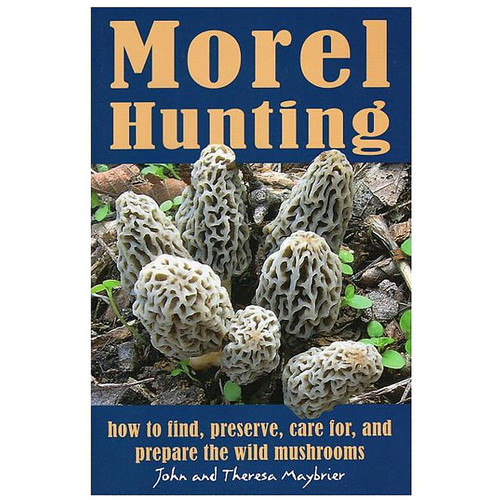 Morel Hunting: How to Find, Preserve, Care for, and Prepare