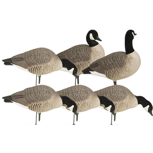 GHG Hunter Series Harvester Lesser Full Body Canada Goose Decoy 6 Pack