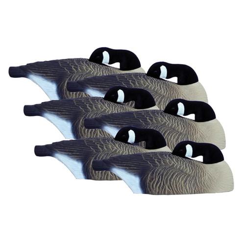 Higdon Full Size Half Shell Sleeper Pack Canada Goose Decoy Polymer 6PK