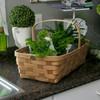 Peterboro Greenhouse Market Basket
