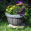 Peterboro Countertop Planter Set