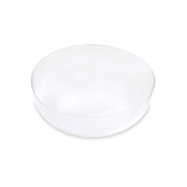 Fruit and Nut Plastic Protector