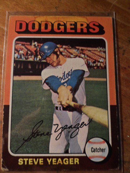 Steve Yeager - 376