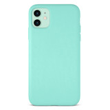 Classic Flex Case for iPhone 11 & XR - Mint