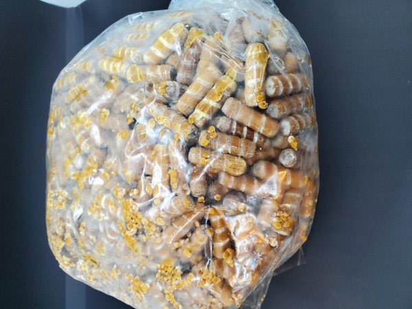 Plugs will come in 100 Count Bags of the same species.