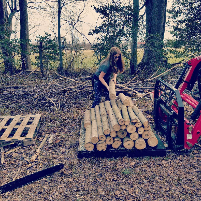 Prime Time for Log Inoculation