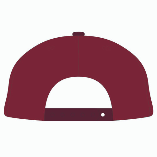 Back of red baseball hat.