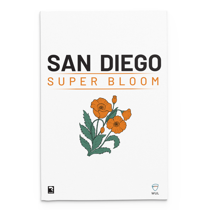 San Diego Light Blanket