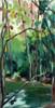 """Wild Basin Trees, Early Fall"" by Jamie Billman McCormick"