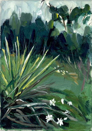 """Yucca & Fall Flowers"" by Jamie Billman McCormick"