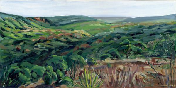 """Wild Basin Overlook"" by Jamie Billman McCormick"