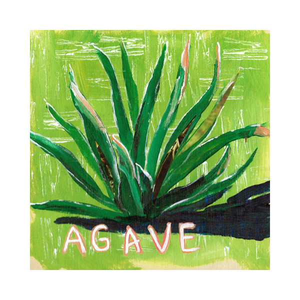 Plant Prints - Set of 3 (Agave in Greens)