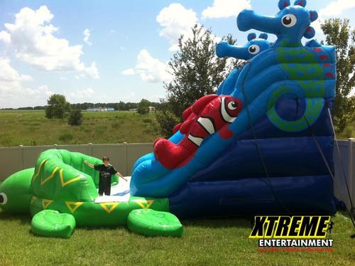 16 Foot Ocean Fun Slide
